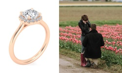 Lovely in Rose Gold and Tulip Fields: Josh & Alexandra - Image
